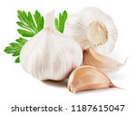 garlic with leaf isolated on... | Shutterstock . vector #1187615047