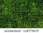 green grass texture   brick... | Shutterstock . vector #118779679