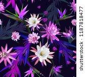 cactus  tropical flowers ... | Shutterstock .eps vector #1187818477