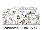 home flowers poster banner... | Shutterstock .eps vector #1187877547