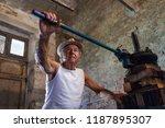 grape harvest  old winemaker... | Shutterstock . vector #1187895307