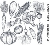 set of hand drawn vector farm... | Shutterstock .eps vector #1188238201