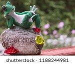 Happy Frog Posing On Rock In...