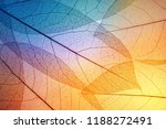 colorful leaves background.... | Shutterstock . vector #1188272491
