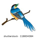 painting of a bird on the white ... | Shutterstock .eps vector #118834384
