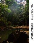 curtis falls in mount tamborine | Shutterstock . vector #1188402787