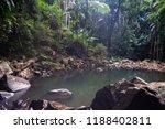 curtis falls in mount tamborine | Shutterstock . vector #1188402811