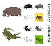 different animals cartoon black ... | Shutterstock . vector #1188567091