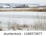 dry last year's reed on the...   Shutterstock . vector #1188573877