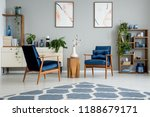 blue carpet in grey living room ...