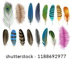 feather birds icon set.... | Shutterstock . vector #1188692977