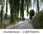 giant weeping willow tree by a...   Shutterstock . vector #1188706051