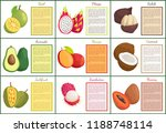 bael and pitaya salak posters... | Shutterstock .eps vector #1188748114