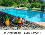 exotic fruits by the pool | Shutterstock . vector #1188759244