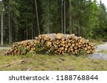 stack of felled trees in the... | Shutterstock . vector #1188768844