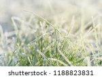frozen morning grass    Shutterstock . vector #1188823831