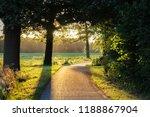 sunset near the lush fields... | Shutterstock . vector #1188867904