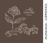 clove tree  buds and leaves.... | Shutterstock .eps vector #1189024321