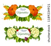 garden vegetables  pumpkins ... | Shutterstock .eps vector #1189234921