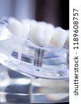 dentist dental teeth teaching...   Shutterstock . vector #1189608757