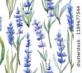 watercolor purple lavender... | Shutterstock . vector #1189677544