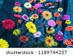 autumn outdoor floral...   Shutterstock . vector #1189744237