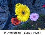 autumn outdoor floral...   Shutterstock . vector #1189744264