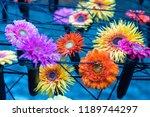 autumn outdoor floral...   Shutterstock . vector #1189744297