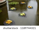 autumn outdoor floral...   Shutterstock . vector #1189744321