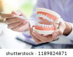 concentrated dentist sitting at ... | Shutterstock . vector #1189824871