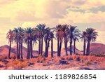 oasis in desert. palm trees... | Shutterstock . vector #1189826854