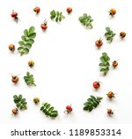 composition of leaves and... | Shutterstock . vector #1189853314