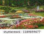 chiang rai  thailand   march 12 ... | Shutterstock . vector #1189859677