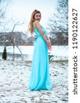winter holiday concept.... | Shutterstock . vector #1190122627