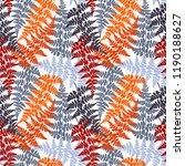 fern frond herbs  tropical... | Shutterstock .eps vector #1190188627