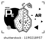 pear isolated vector. abstract... | Shutterstock .eps vector #1190218957