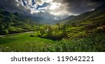 Landscape With Rice Terraces...