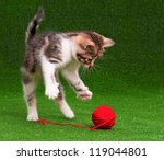 Stock photo cute kitten playing red clew of thread on artificial green grass 119044801