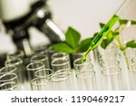pipette over test tube dropping ... | Shutterstock . vector #1190469217