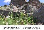 pergamon museum  ruins of... | Shutterstock . vector #1190500411