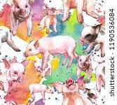 pink pig wild animal in a...   Shutterstock . vector #1190536084