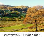 autumn landscape in the english ... | Shutterstock . vector #1190551054