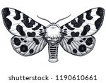 hand drawn butterfly tattoo.... | Shutterstock . vector #1190610661