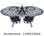 beautiful butterfly tattoo.... | Shutterstock . vector #1190610664