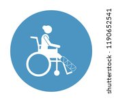 the girl in a wheelchair with a ...