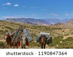 horses and mules carrying heavy ...   Shutterstock . vector #1190847364