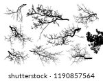 realistic set of tree branches... | Shutterstock .eps vector #1190857564