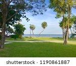 green tree garden with summer...   Shutterstock . vector #1190861887