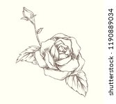 rose in hand drawn style | Shutterstock .eps vector #1190889034