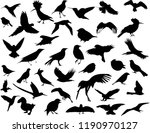 Stock vector shadow of birds 1190970127